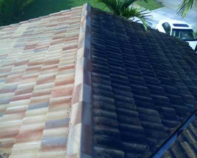 Quality Service - Roof Cleaning